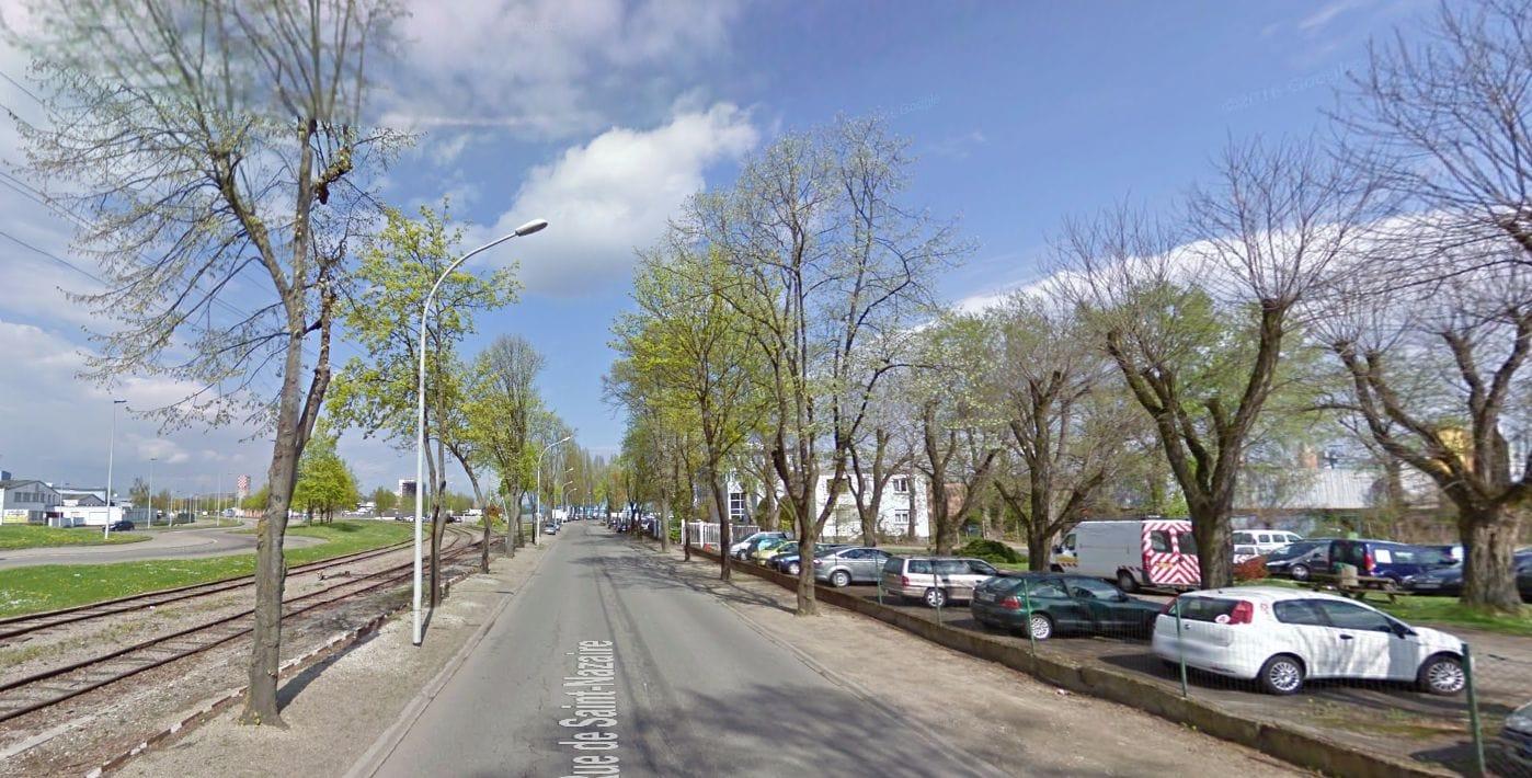 Mobilisation contre l'abattage d'arbres au Port du Rhin