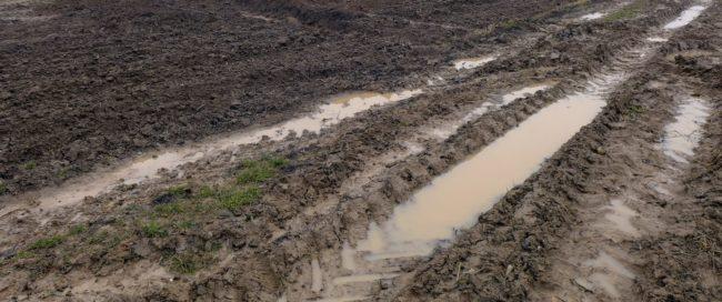 Vinci assure que les agriculteurs seront indemnisés à hauteur des récoltes potentielles.