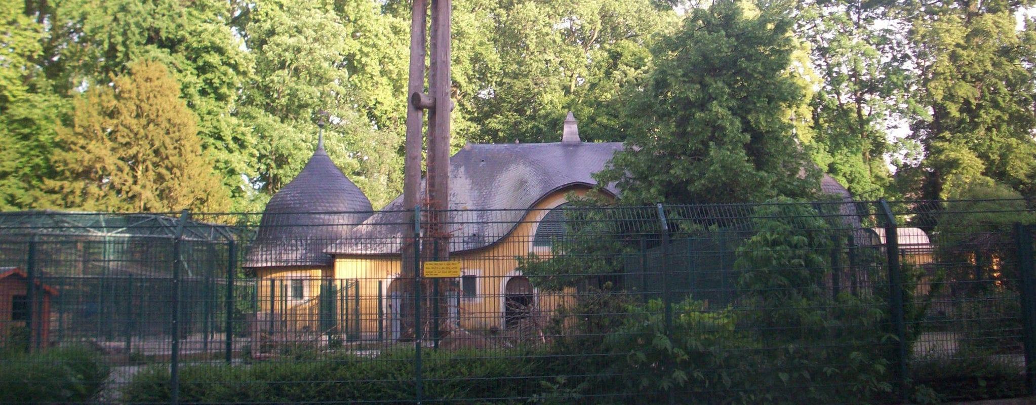 Début de la mue du zoo de l'Orangerie, les lynx s'en vont