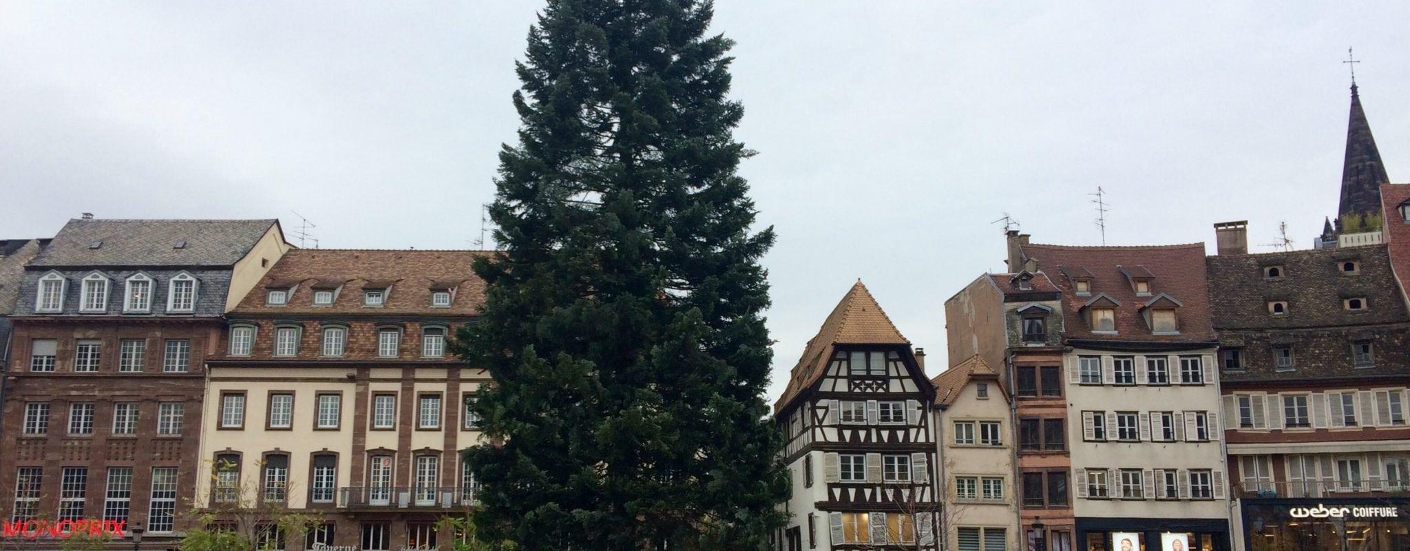 Le grand sapin de Noël fissuré, un troisième sera installé place Kléber