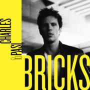 charles_pasi_bricks