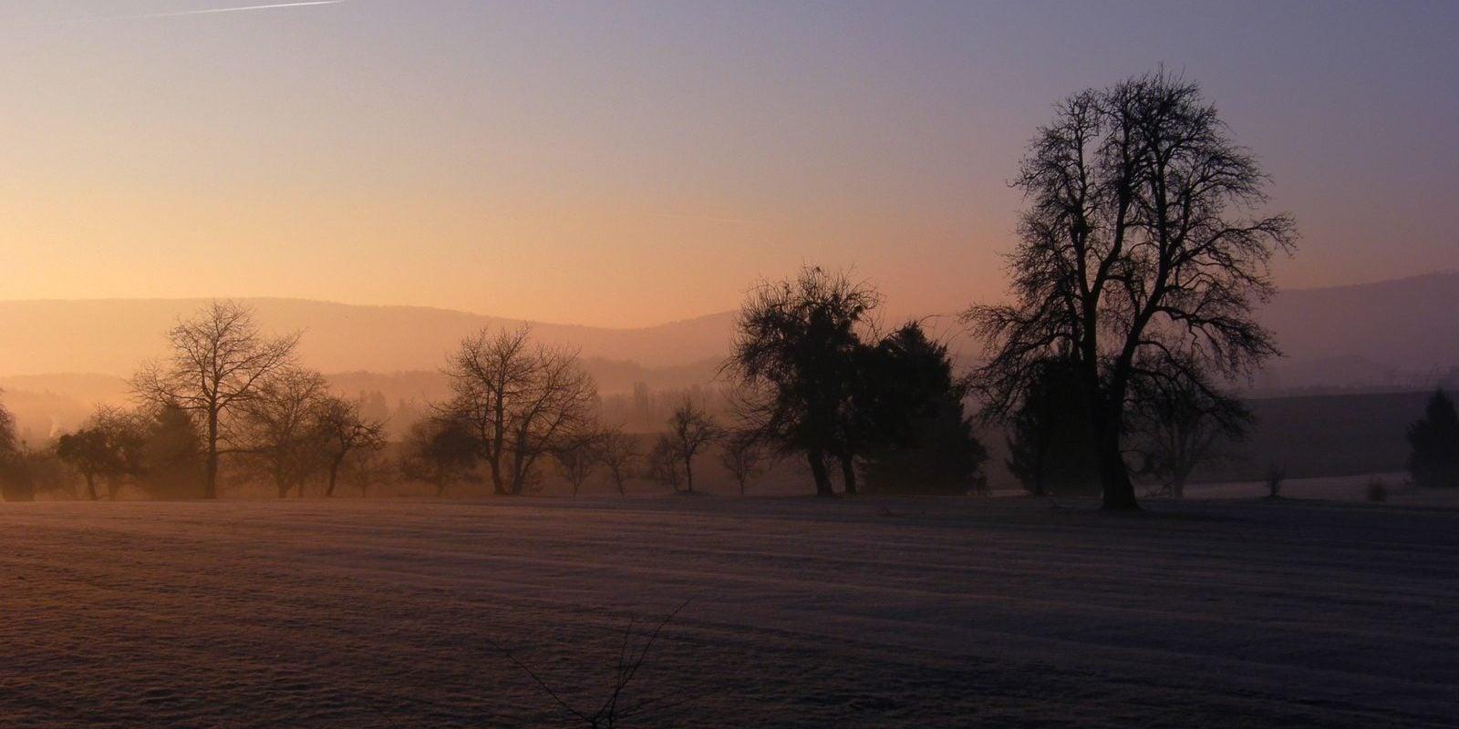 En 7 ans, trois fois plus de pesticides retrouvés dans la nappe phréatique d'Alsace