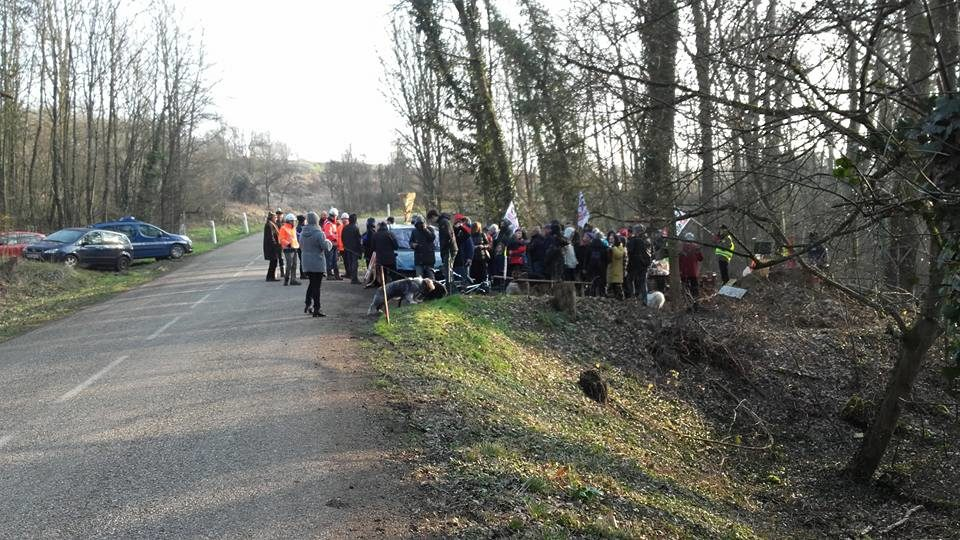 GCO : rapide face-à-face à la Zad de Kolbsheim, sans travaux