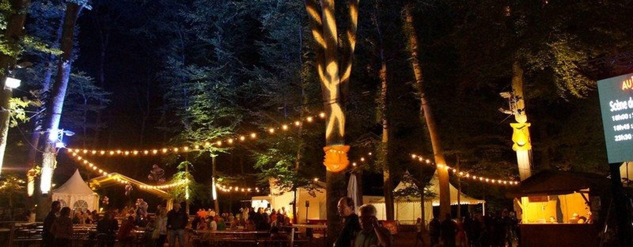 À Summerlied en août, pas mal d'artistes strasbourgeois en concert au milieu de la forêt
