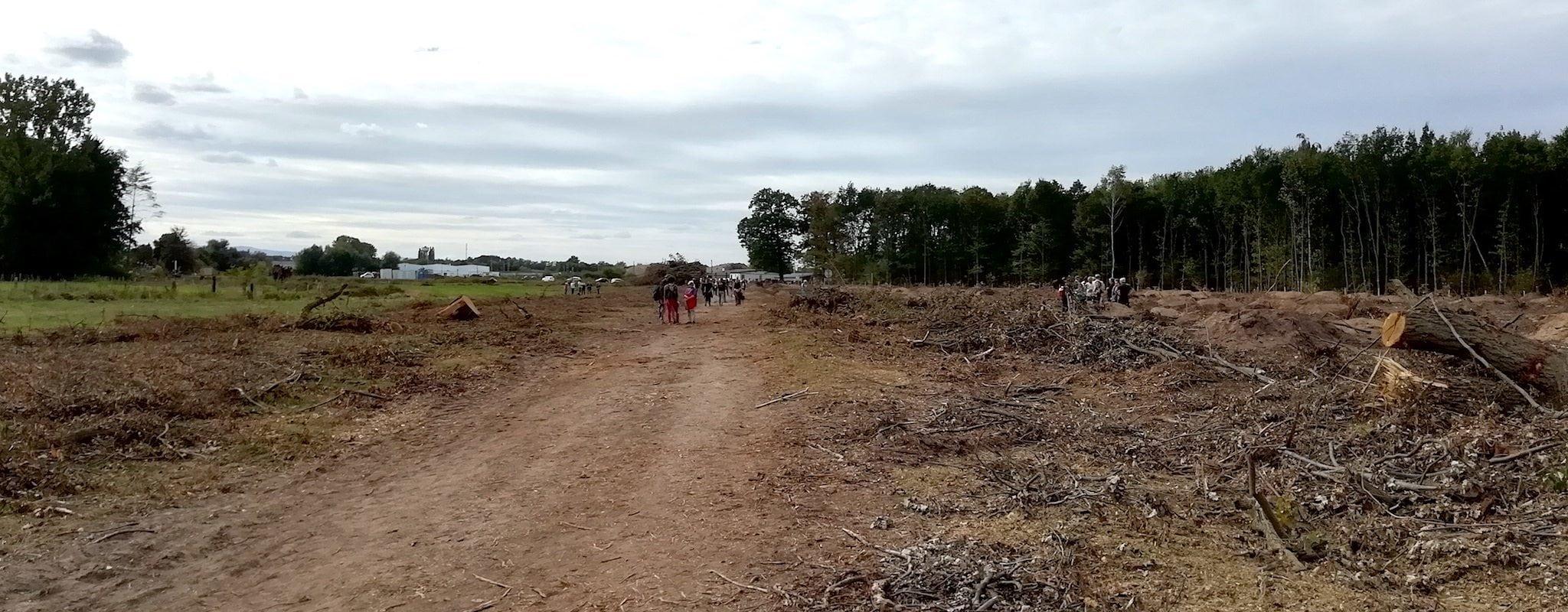 «Aux arbres citoyens», thérapie collective des opposants au GCO à la forêt du Krittwald