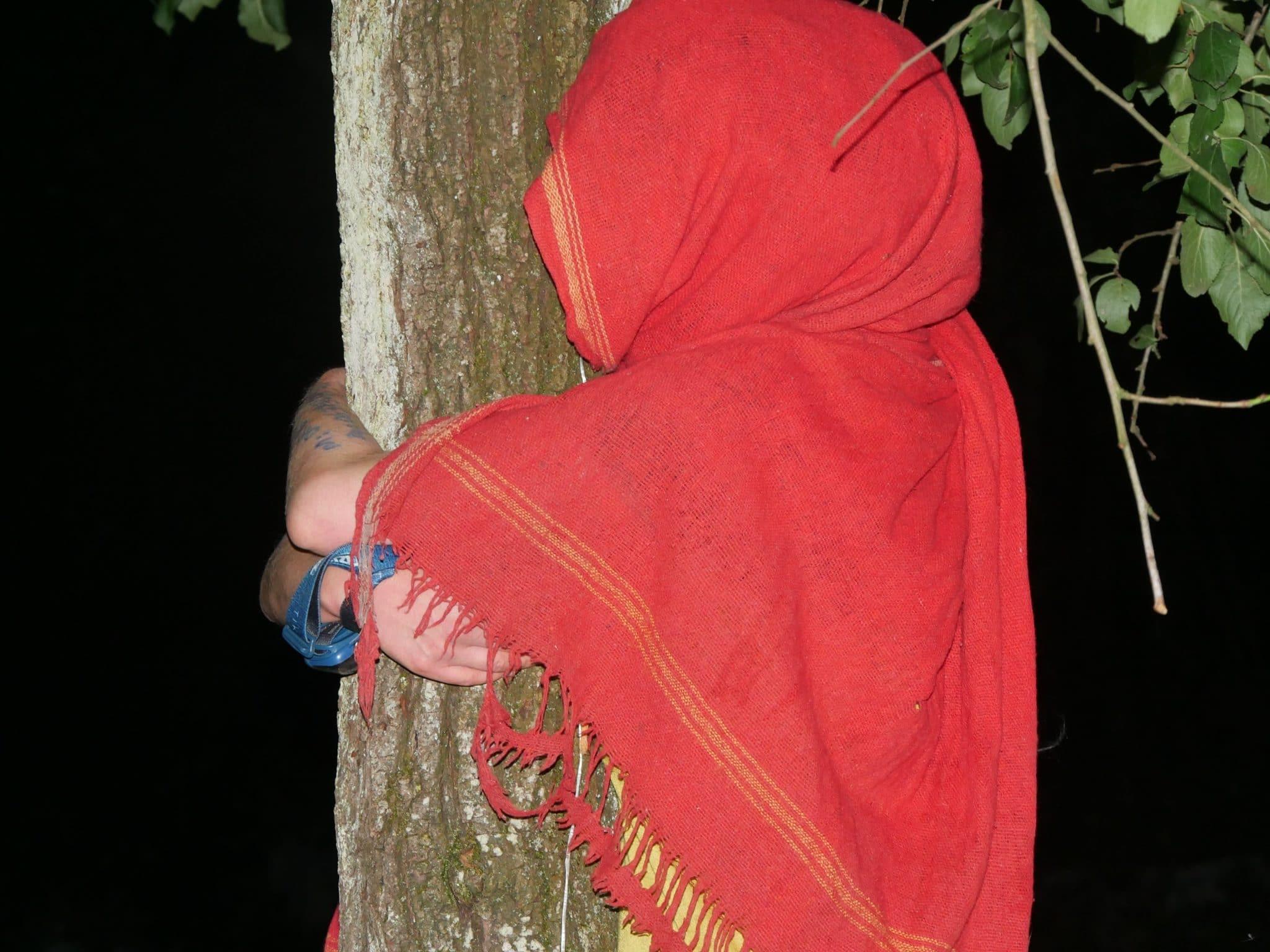 Des militants opposés au GCO ont tenté de s'accrocher aux arbres (Photo GK / Rue89 Strasbourg / cc)