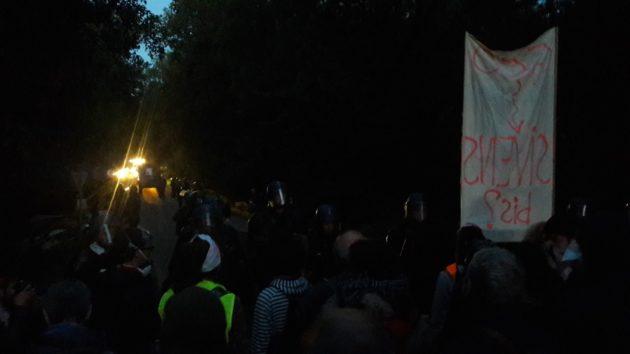 Les zadistes sont regroupés tandis que l'abattage des arbres commence (Photo GK)
