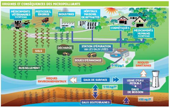 La pollution des milieux aquatiques (schéma Bordeaux Métropole)