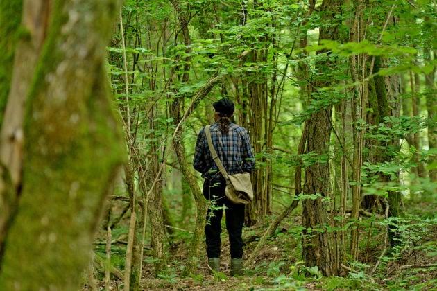 Didier ne craint pas ces forêts aux sols chargés d'explosifs... (Photo Frédéric Mercenier)