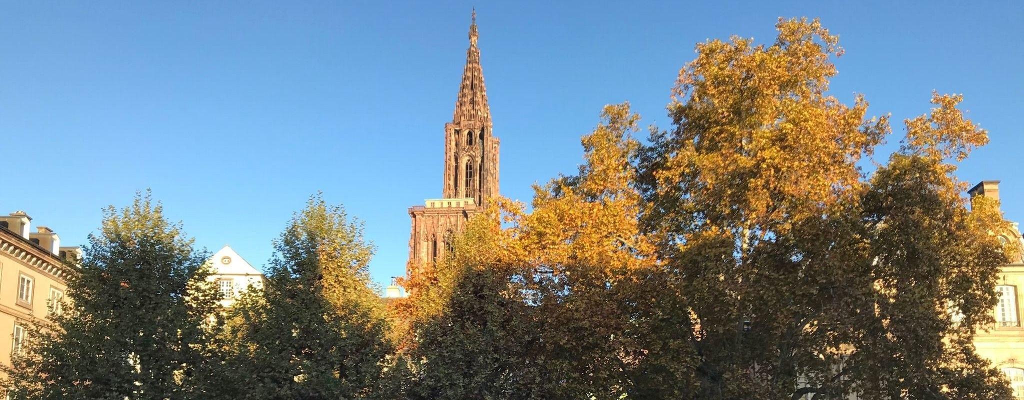 Strasbourg: il était une fois… une ville Oasis!