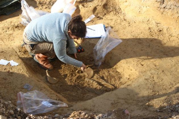 La forme du bassin a permis de déterminer qu'il s'agit d'une femme. (photo JFG / Rue89 Strasbourg)