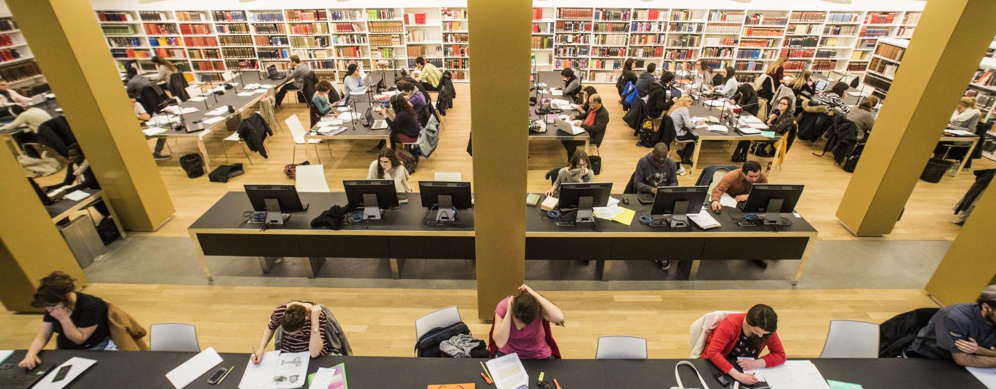 Étudiants étrangers : l'Unistra exonère en 2019 et cherche des solutions pour ensuite