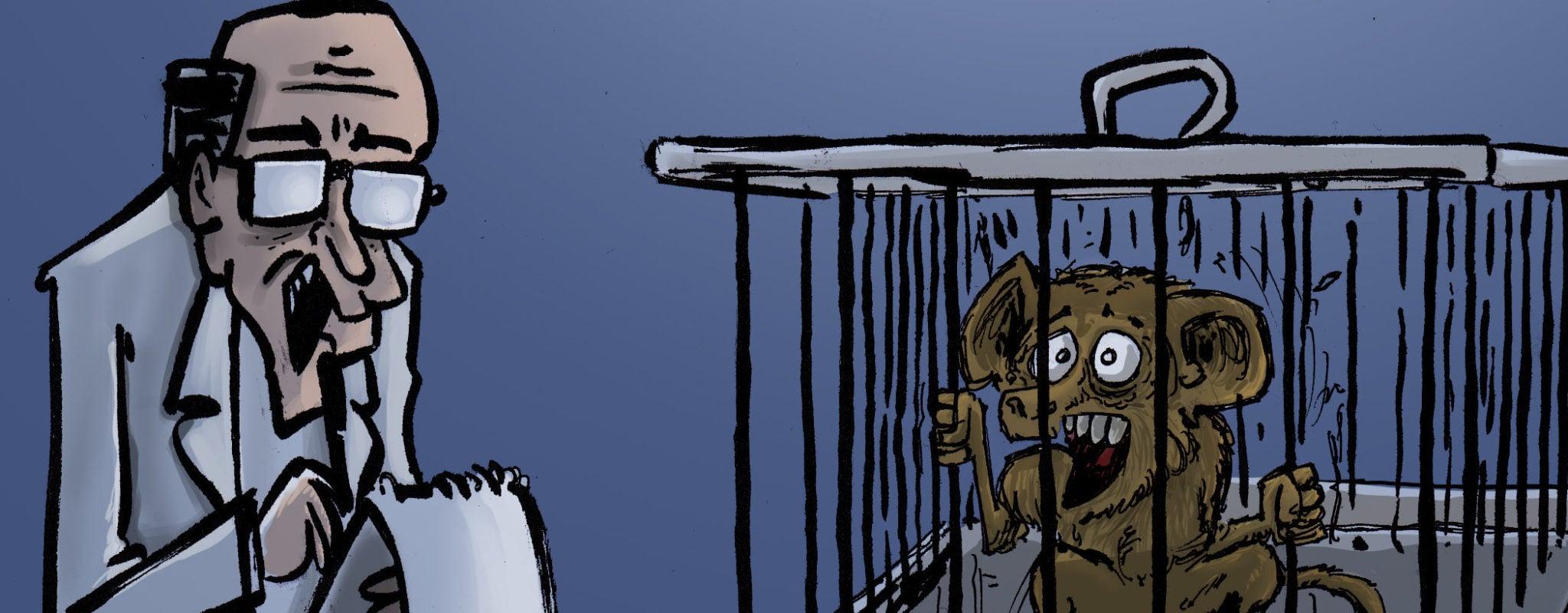 La dure vie des singes pensionnaires de l'université