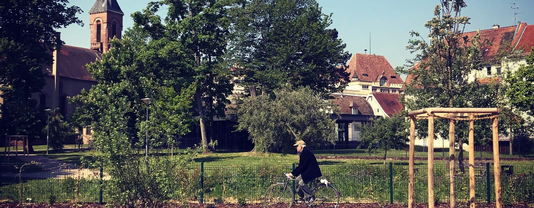 À la Robertsau, le «tram-jardin» s'arrête à mi-chemin