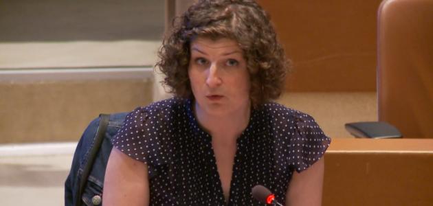 Municipales : Jeanne Barseghian, première candidate écolo, un vote ouvert le 5 octobre