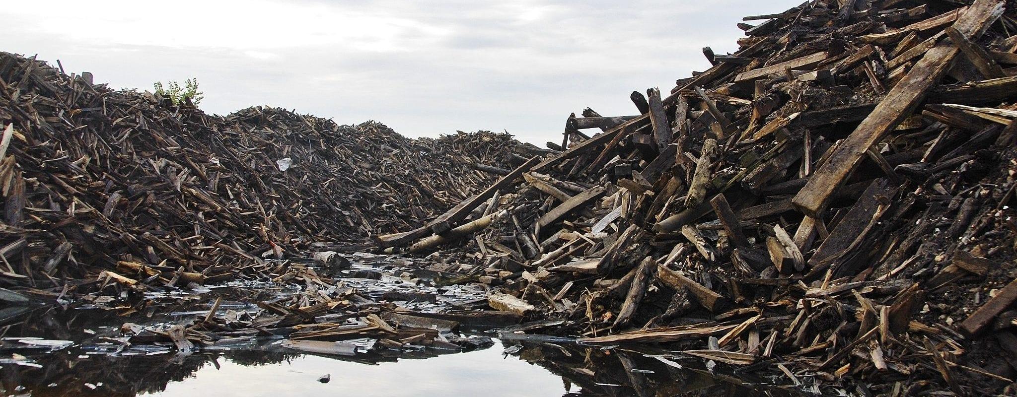 Des milliers de tonnes de bois toxique menacent les riverains et les bassins du Port du Rhin
