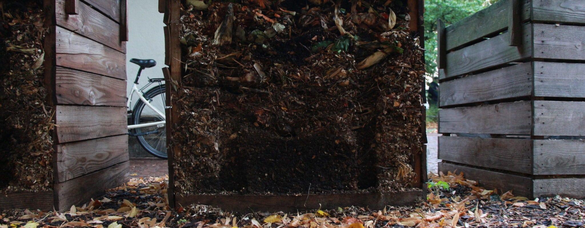 Victimes de leur succès, les bacs à compost saturent