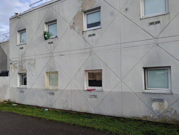 À Lampertheim, les demandeurs d'asile vivent avec les cafards depuis des années