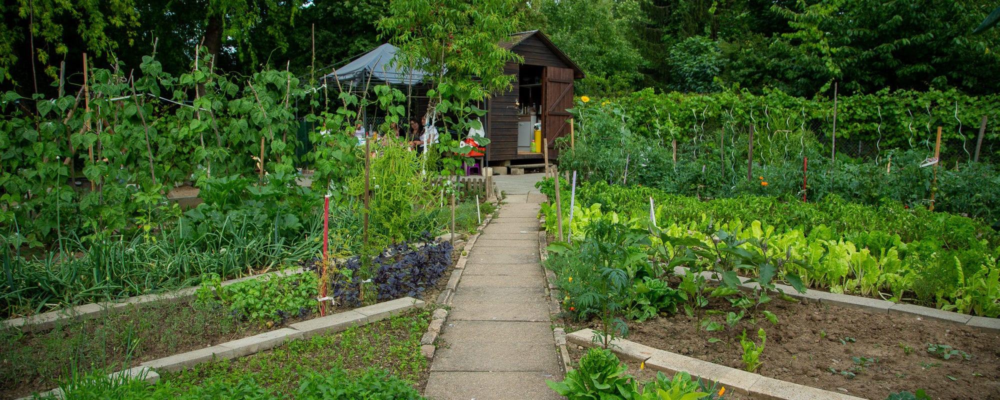 La société rêvée des jardins familiaux