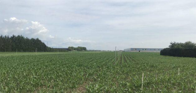 Avis favorable sans réserve pour l'entrepôt type-Amazon à Ensisheim