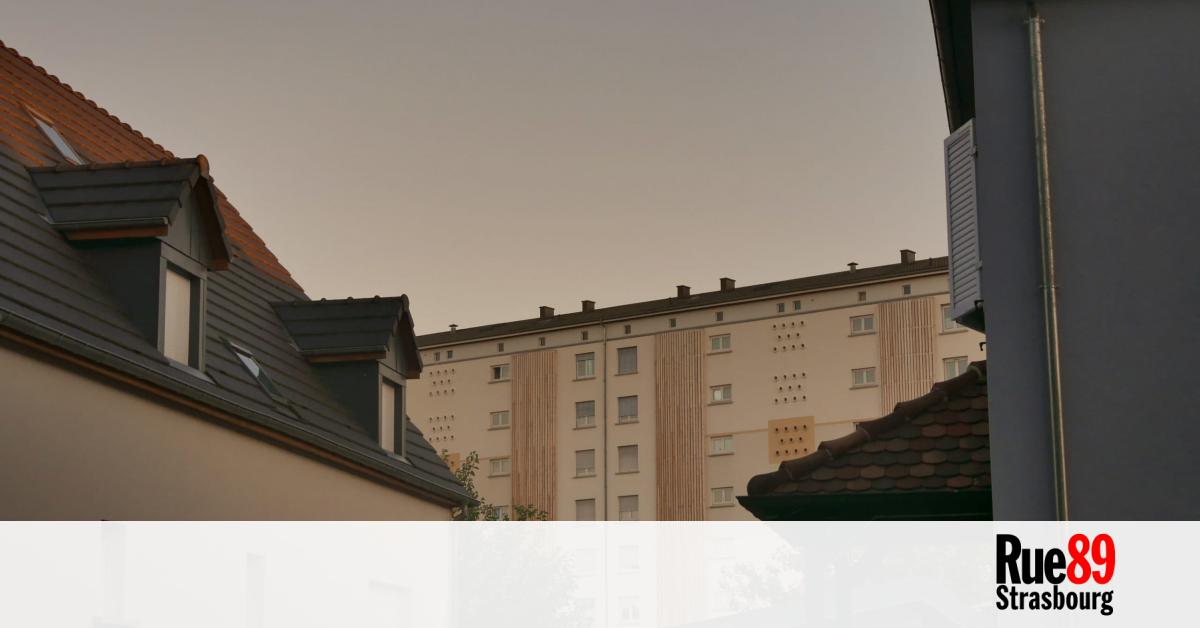 www.rue89strasbourg.com