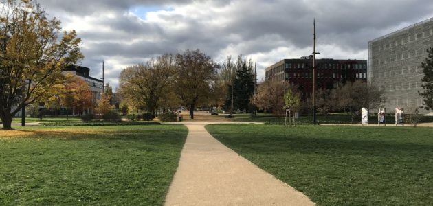 Reconfinement : L'Université de Strasbourg bascule en distanciel