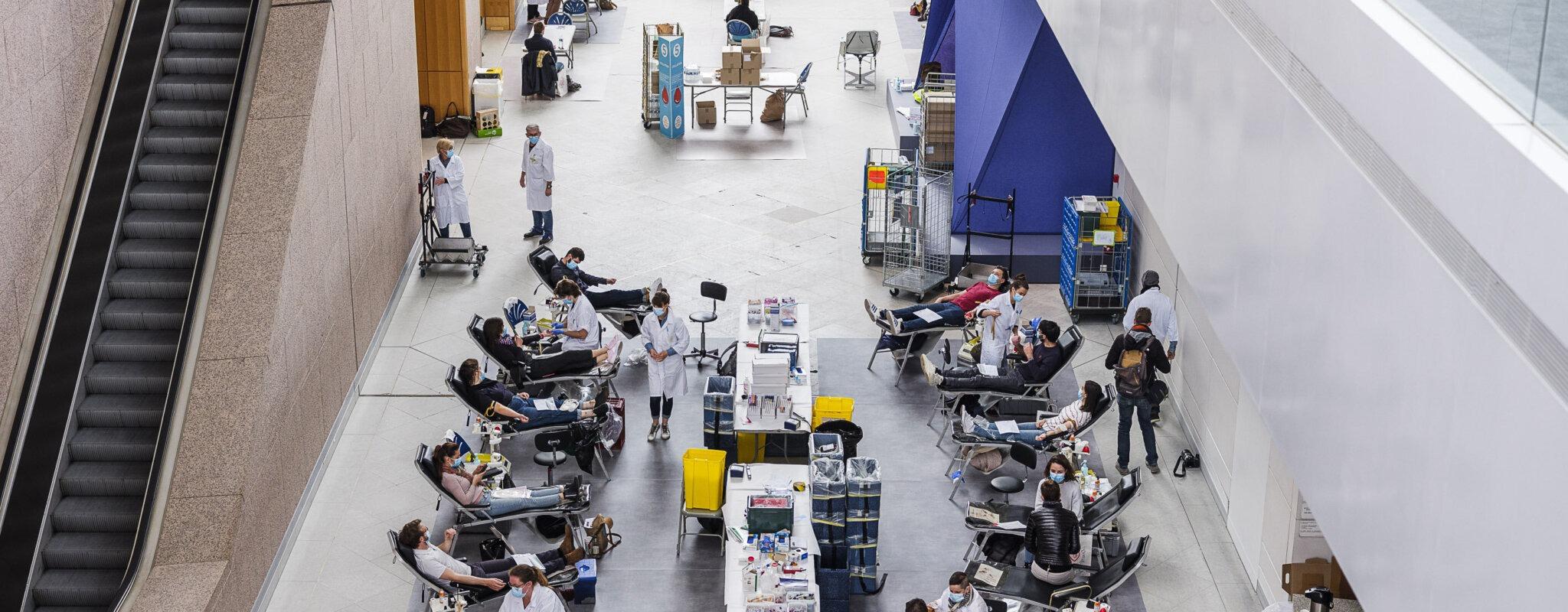 Donner du sang, contempler des œuvres et voir des gens, des «moments volés» au Musée d'art moderne
